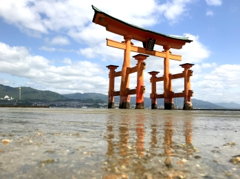 The great Torii - Miyajima Island