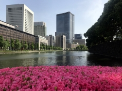 Nature in the city - from the Imperial Palace bridge, Tokyo
